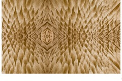 sand patterns - Paul Wright (Commended - Set Subj B Grade - 10 Sep 2020 PDI)