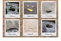 Patterns in Nature - Lynette McKelvie (Commended - Set Subj B Grade - 11 Feb 2021 PRNT)