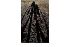 Giant's Bike - Frances Egan (Commended - Set Subject - Shadows - Feb 2019 PDI)