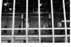 Connected behind bars - Oliver Altermatt (Highly Commended - Open B Grade - 22 Oct 2020 PDI)