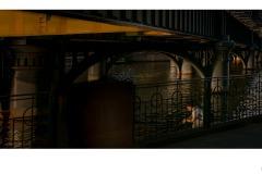 Under the Bridge - Doug Jackson (Commended - Open B Grade - 24 Sep 2020 PDI)