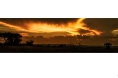 Sunset on African Veldt - Charles Wyatt (Commended - Open B Grade - Feb 2020 PDI)