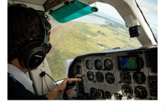 In Flight - Sophie Hunter (Highly Commended - Set Subj B Grade - Feb 2020 PDI)
