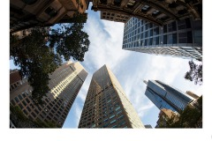 Collins street building architecture - Matthew Leane (Commended - Set Subj B Grade - 27 May 2021 PDI)