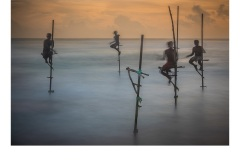 Stilt Fishers Galle - Lesley Bretherton (Commended - Open A Grade - Apr 2019 PDI)