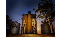 Silo Art - Daryl Groves (Commended - Open B Grade - Aug 2019 PDI)