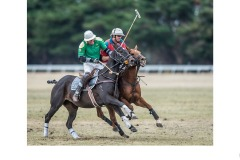 Polo ride off - Graeme Diggle (Commended - Open B Grade - Aug 2019 PDI)
