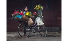 Hanoi Flower Vendor - Brian Seddon (Commended - Set Subject 'F is for ...' - Aug 2019 PDI)