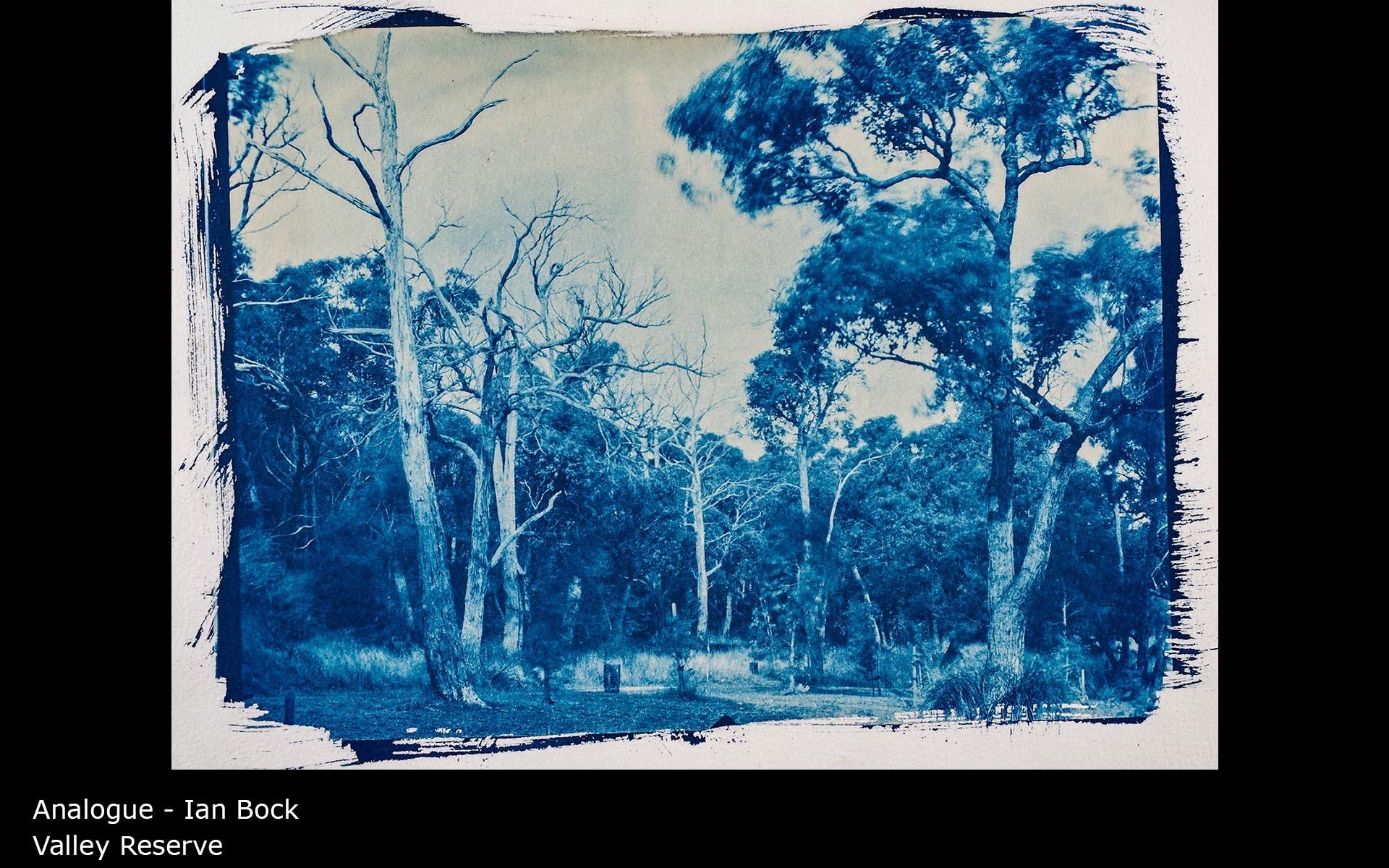 Valley Reserve - Ian Bock