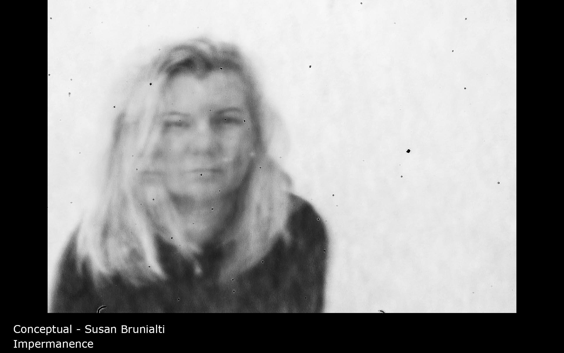 Impermanence - Susan Brunialti