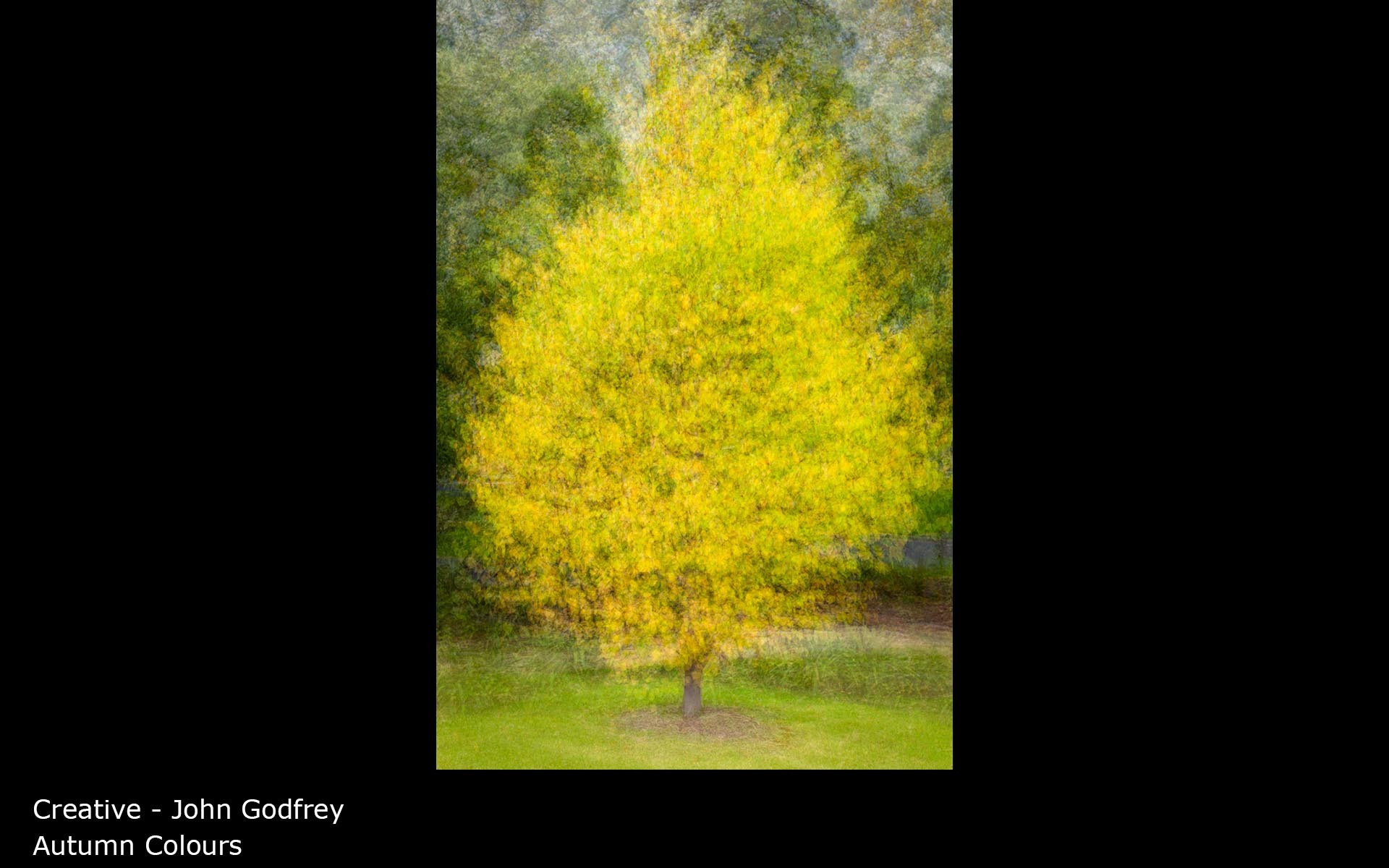 Autumn Colours - John Godfrey