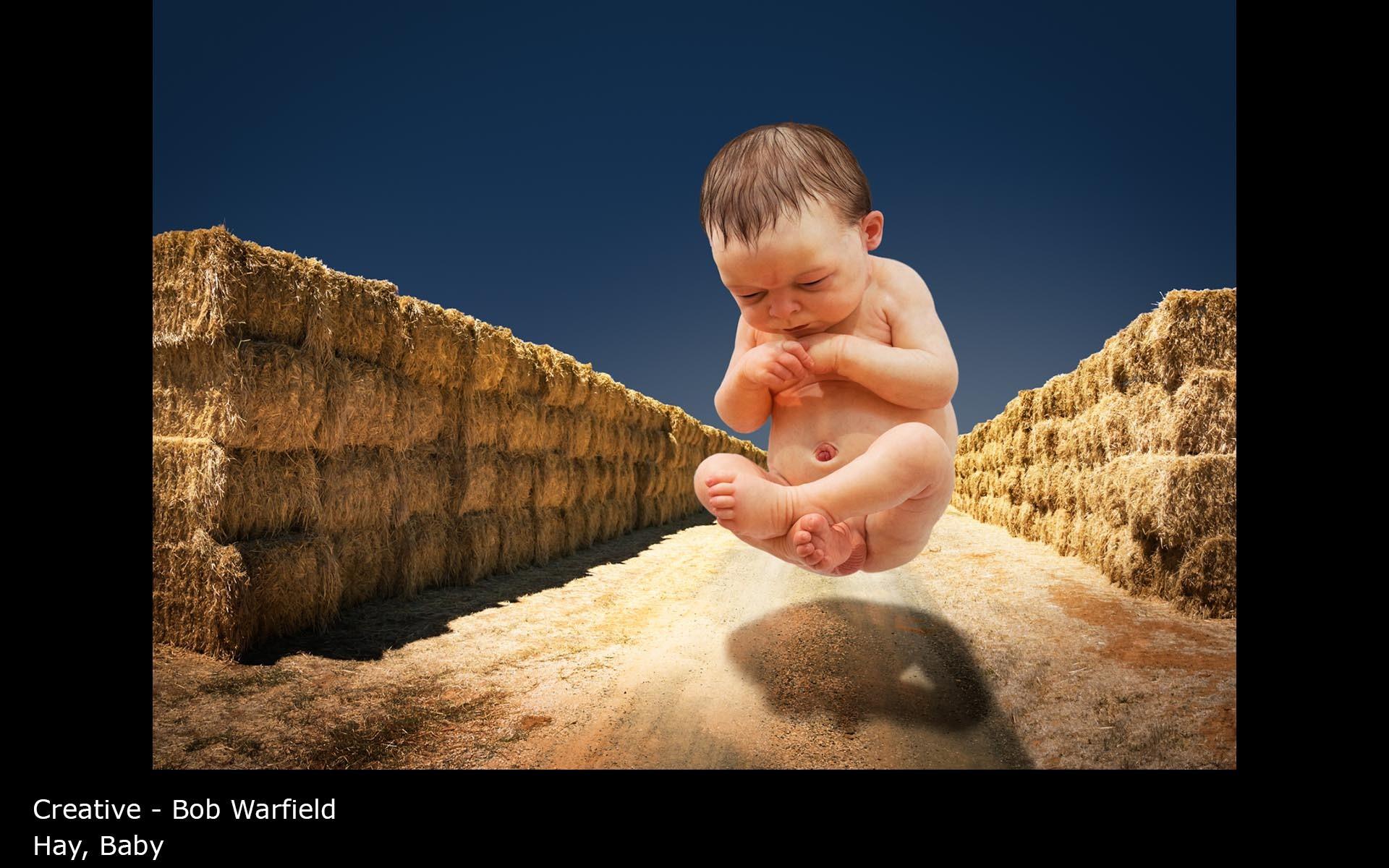 Hay, Baby - Bob Warfield