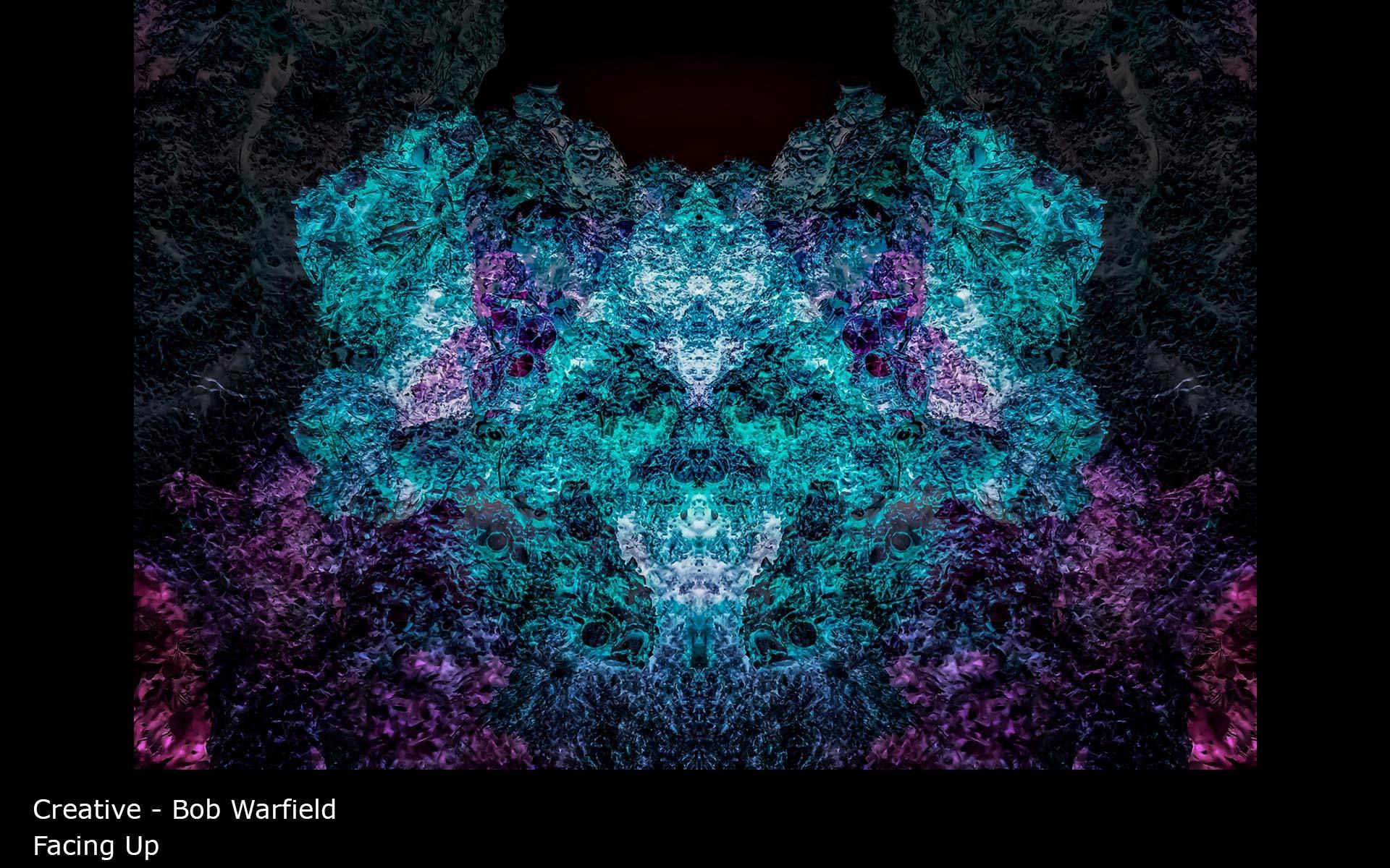 Facing Up - Bob Warfield