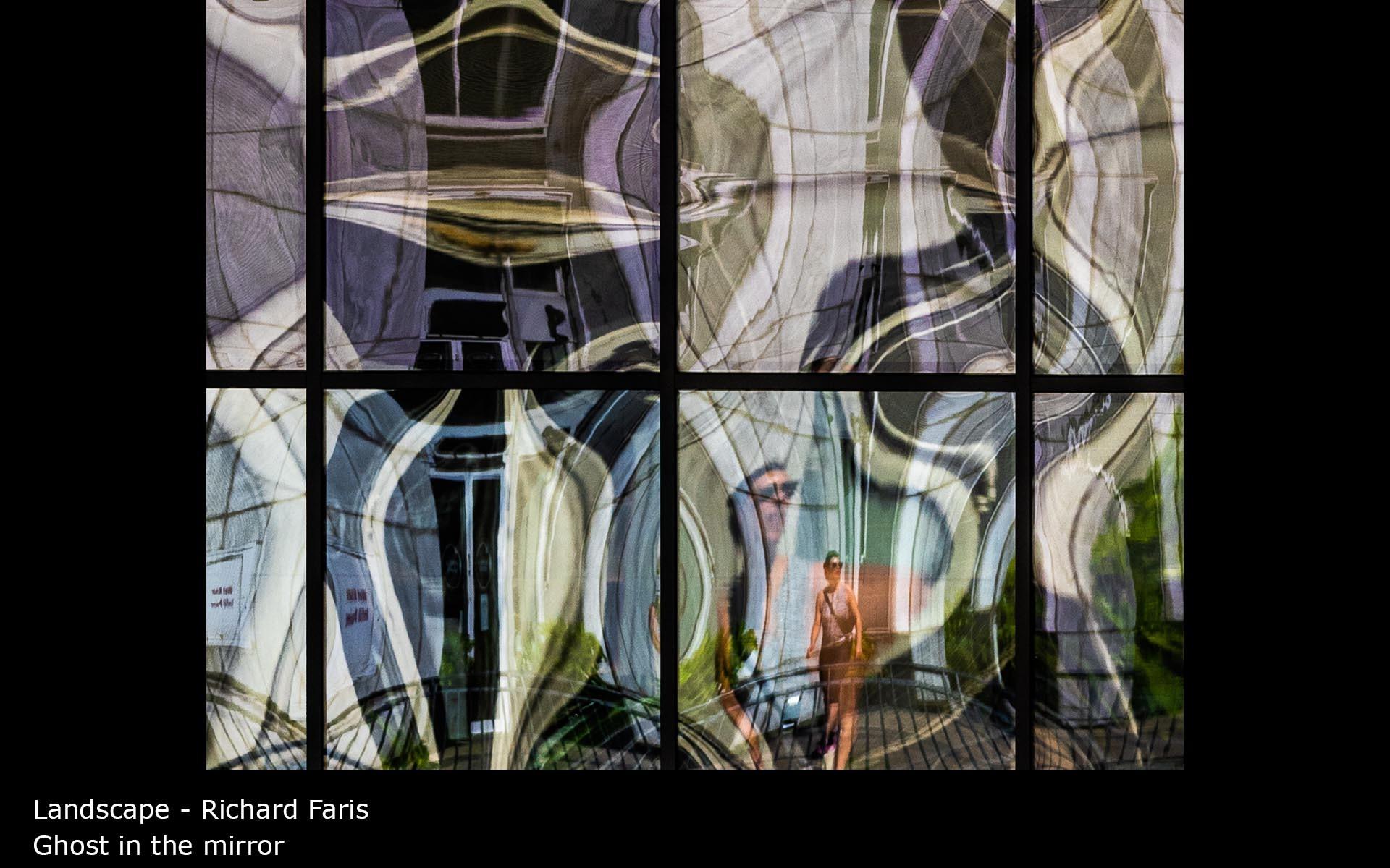 Ghost in the mirror - Richard Faris