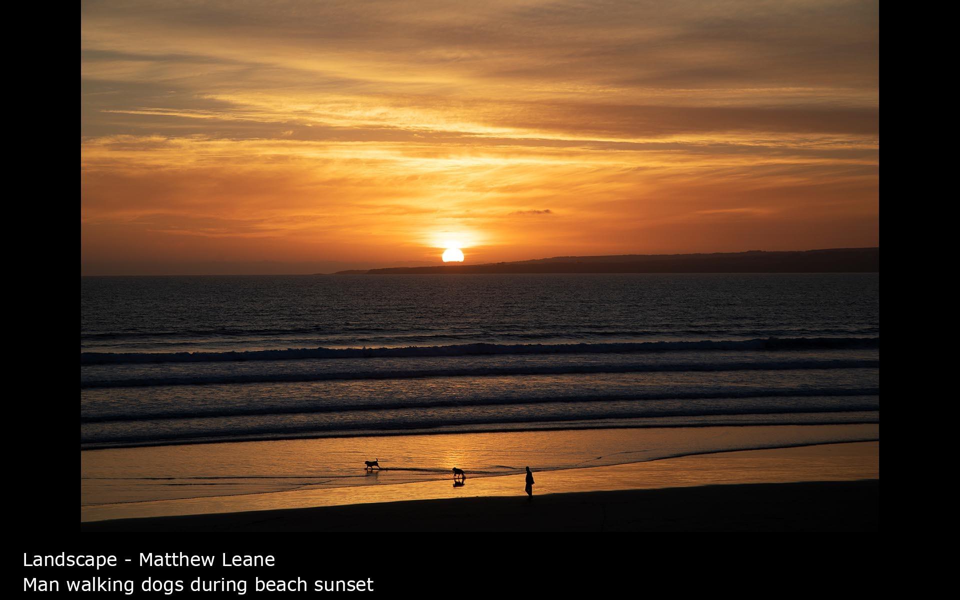 Man walking dogs during beach sunset - Matthew Leane