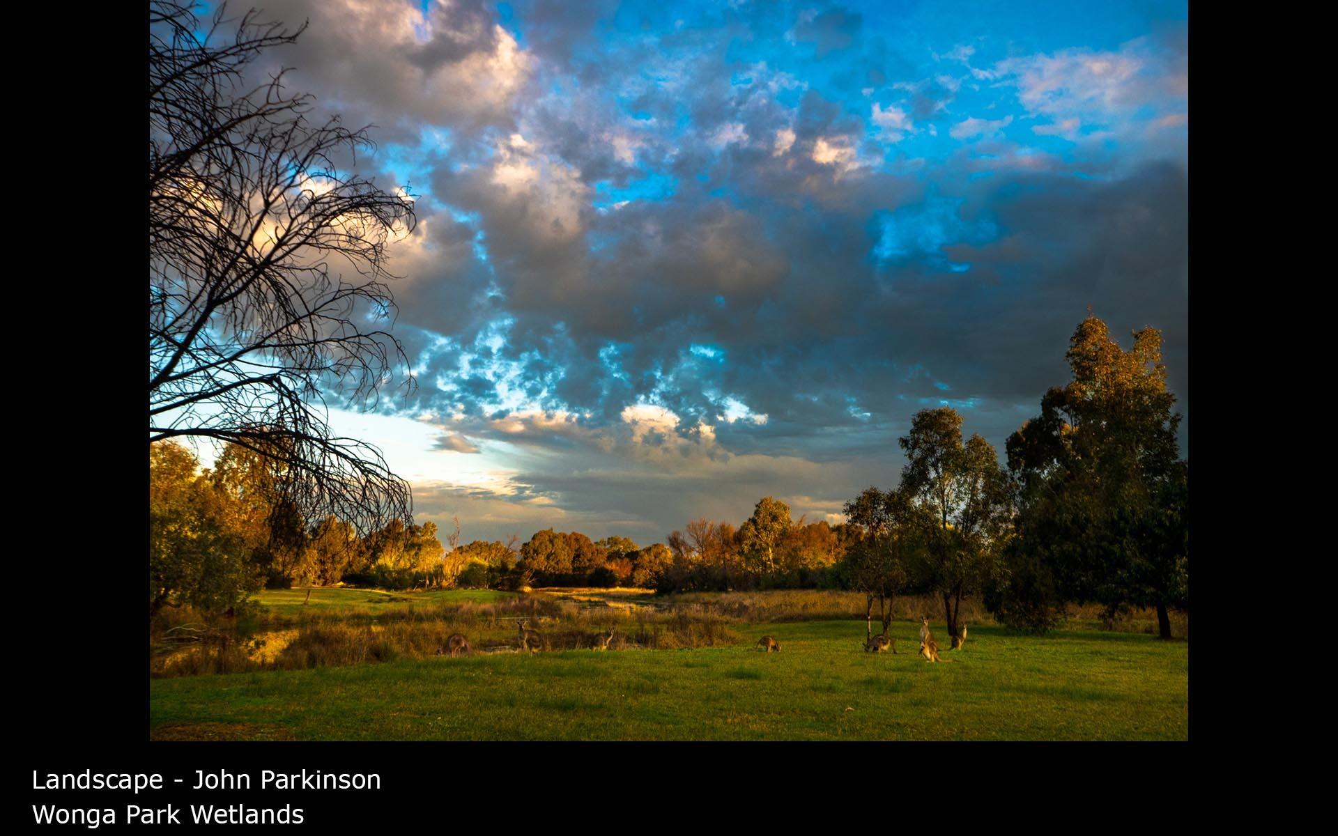 Wonga Park Wetlands - John Parkinson