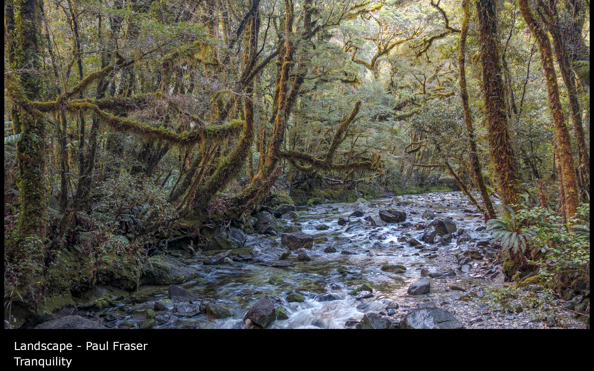 Tranquility - Paul Fraser
