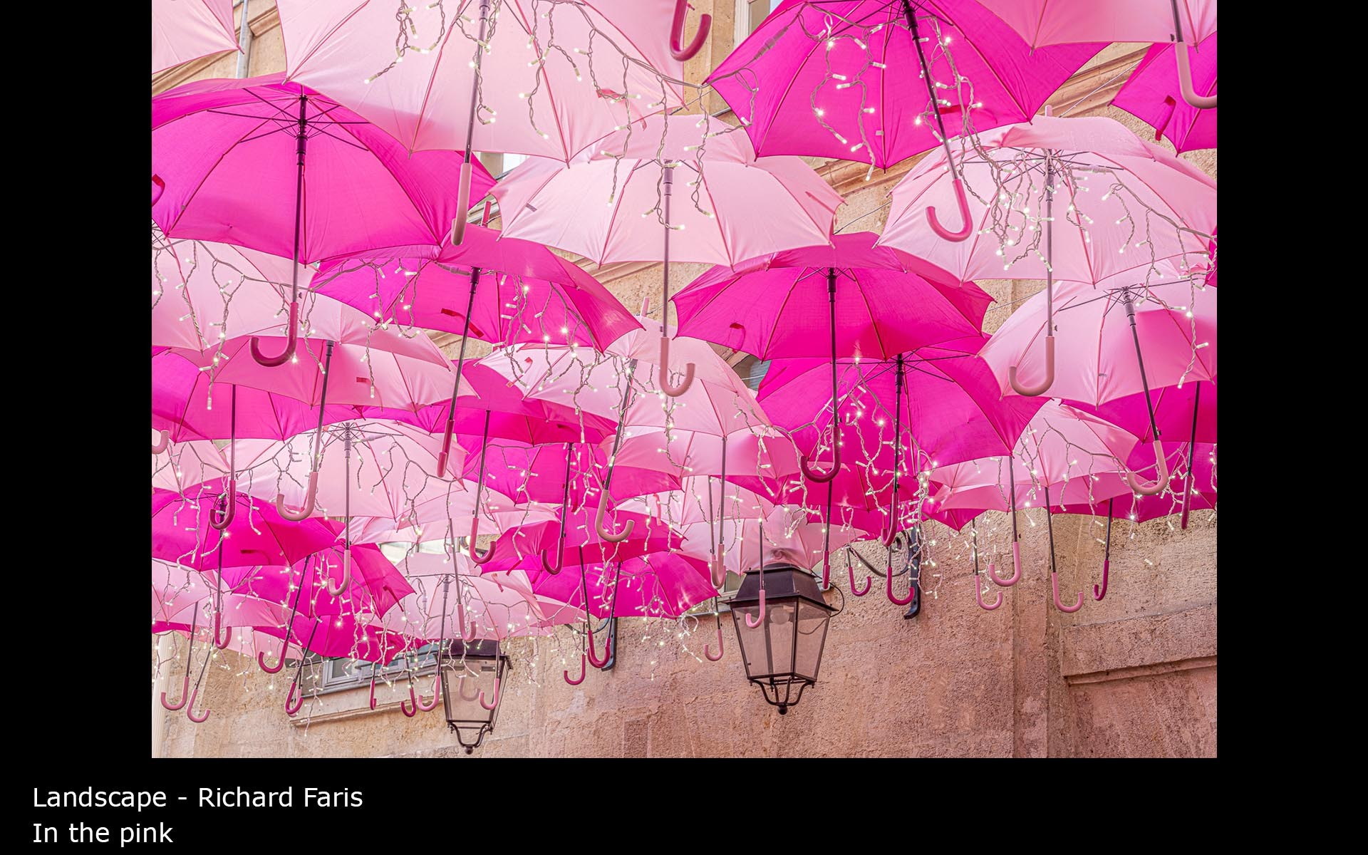 In the pink - Richard Faris