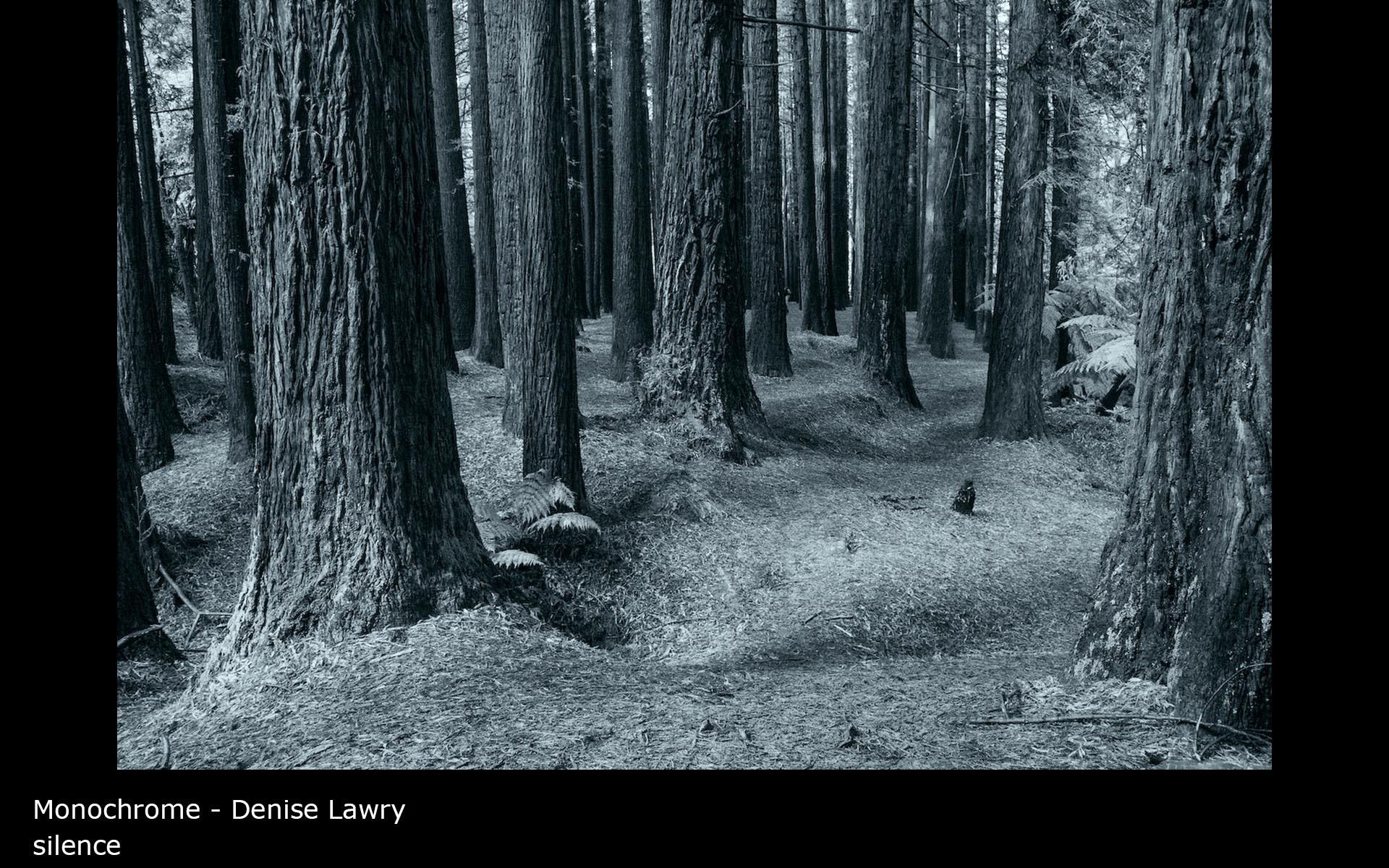 silence - Denise Lawry