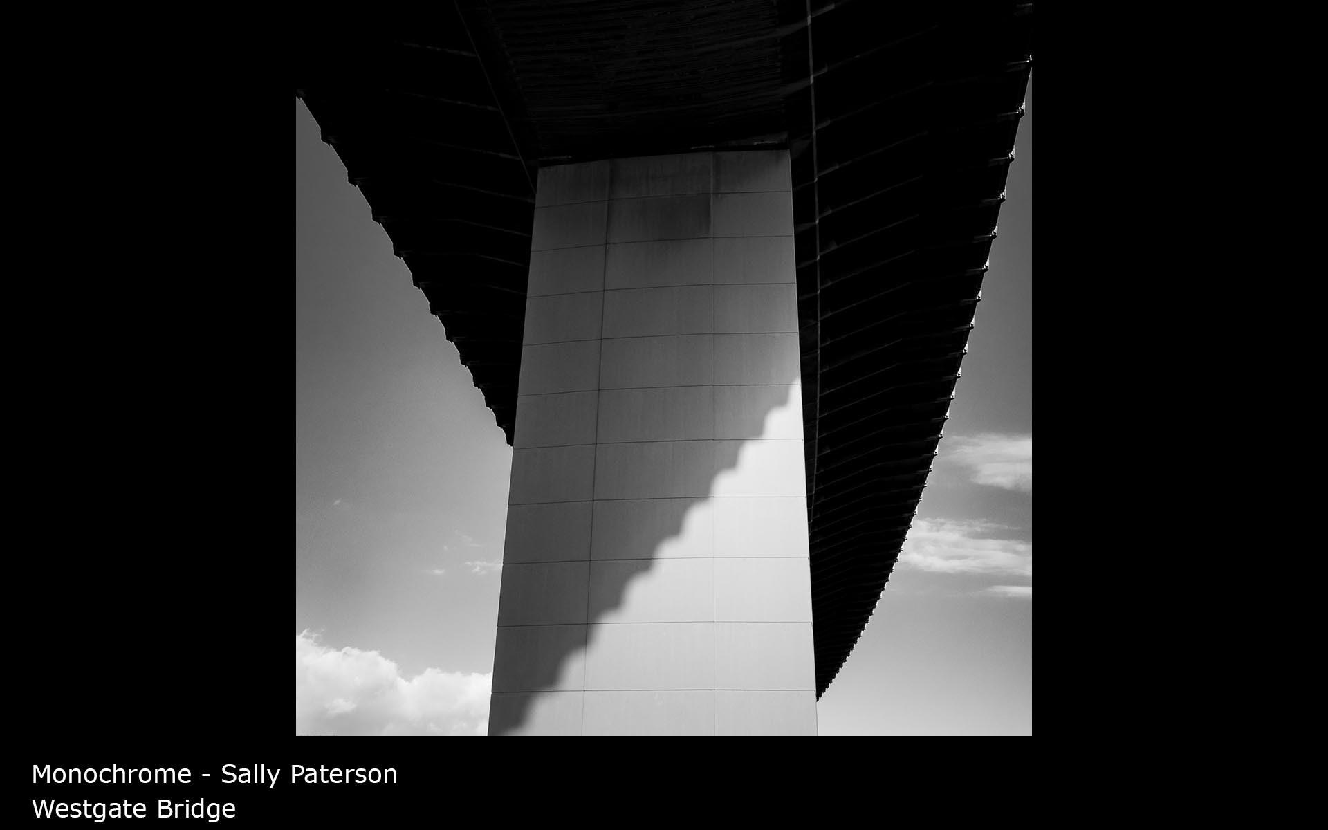 Westgate Bridge - Sally Paterson
