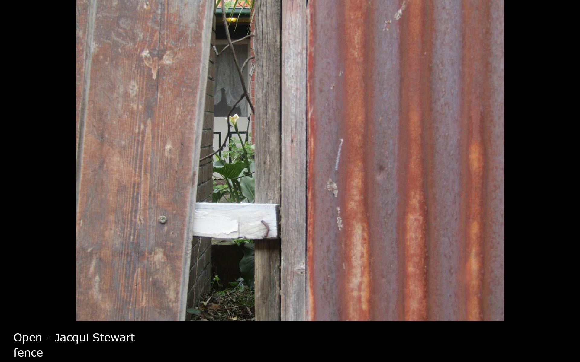 fence - Jacqui Stewart