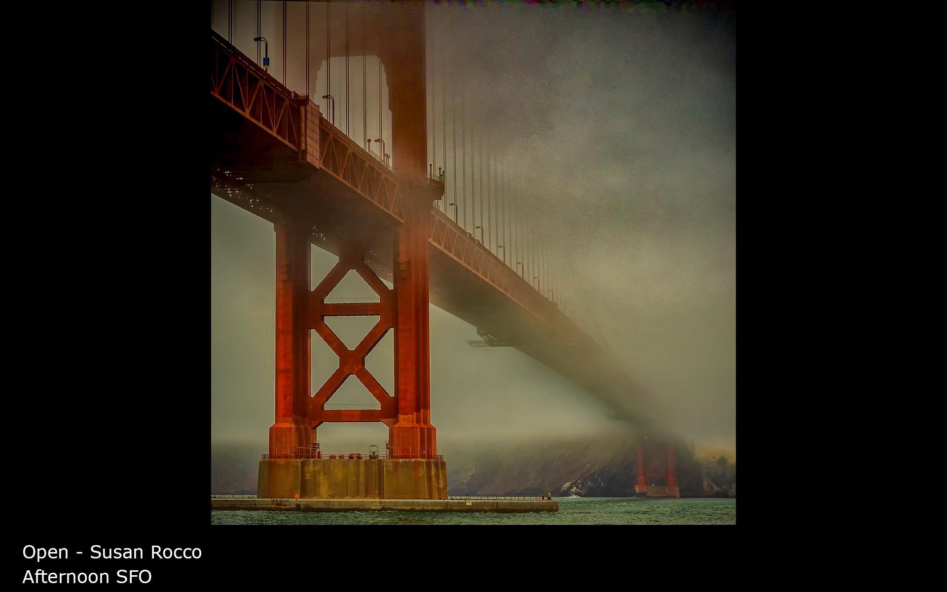 Afternoon SFO - Susan Rocco