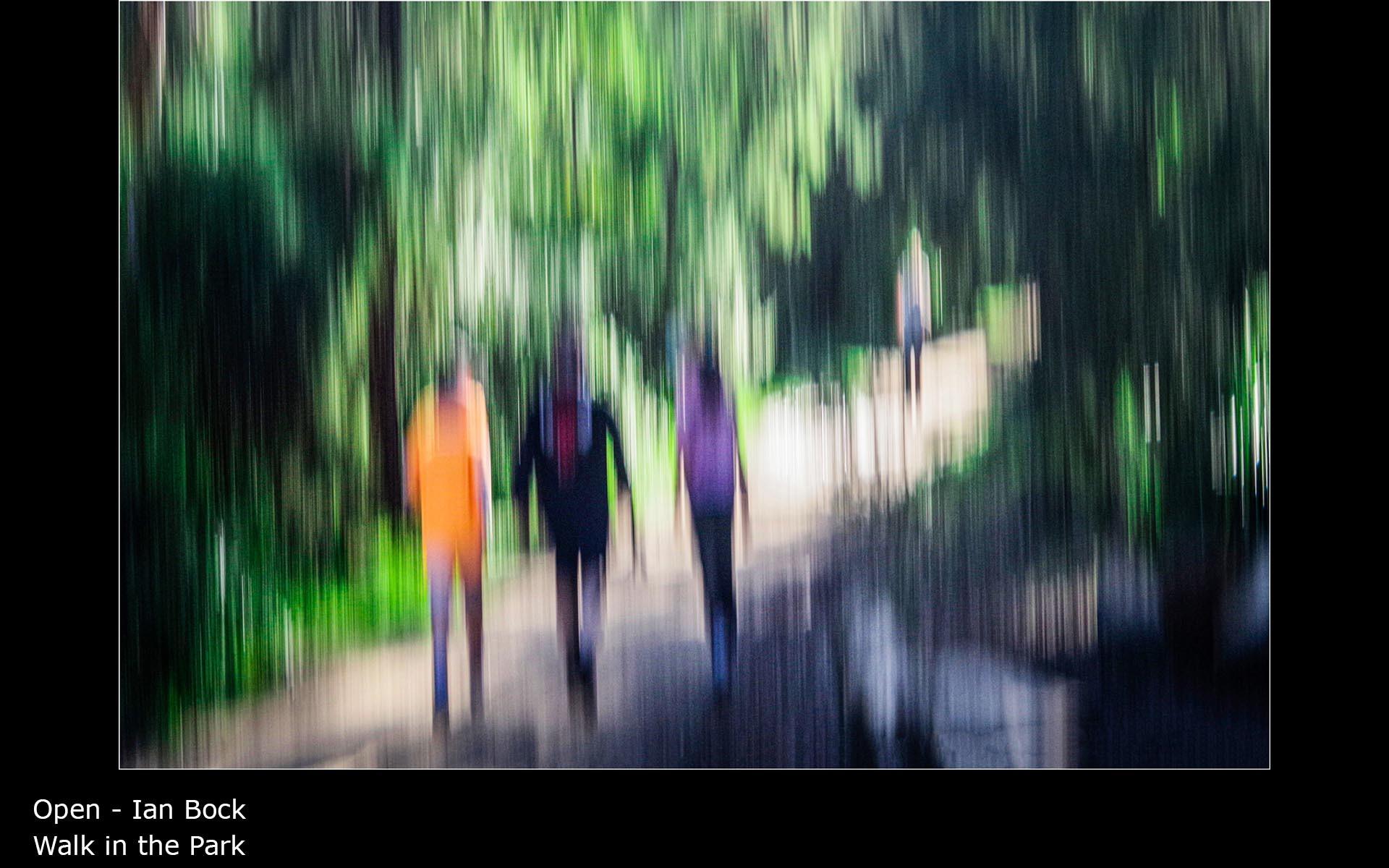 Walk in the Park - Ian Bock