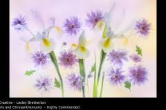 Iris and Chrysanthemums  - Lesley Bretherton