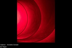 Red Paper - Annette Donald