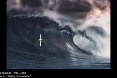 Wave - Paul Dodd