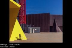 After Smart - Susan Brunialti
