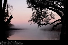 Misty cold morning sunrise Hattah  - Lee-Anne Thomson