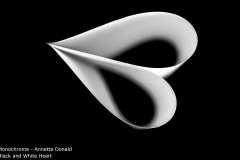 Black and White Heart - Annette Donald