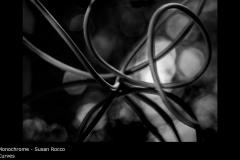 Curves - Susan Rocco