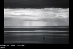 Paddler - Robert Fairweather