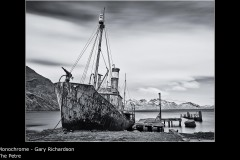 The Petre - Gary Richardson