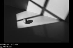 Egg, After Sudek - Paul Dodd