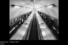 London - Morgan Tobin