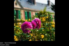 Claude's place - David Sherwood