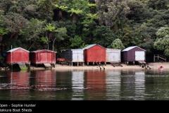 Rakiura Boat Sheds  - Sophie Hunter