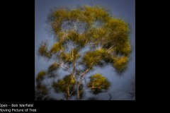 Moving Picture of Tree - Bob Warfield