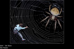 Web Master - Ian Bock