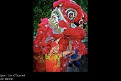 Lion Dancer - Jim O'Donnell