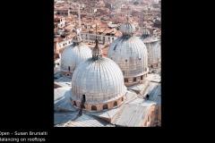 Balancing on rooftops  - Susan Brunialti