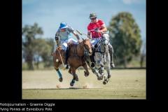 Flying Ponies at Eynesbury Polo - Graeme Diggle