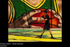 Inspiration - Nicole Andrews
