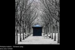 Paris avec COVID - Richard Lang