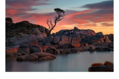 Sunrise Bay of Fires - Jane Clancy (Best - Open - A Grade - July 2019 PDI)