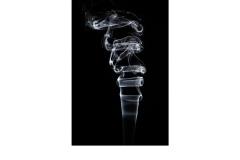 Smoke - Paul Dodd (Commended - Open B Grade - Jun 2019 PDI)