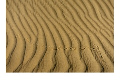 Lines in the Sand - Anne Seddon (Commended - Set Subject - Lines - Jun 2019 PDI)